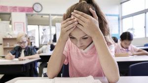 Anno scolastico a rischio